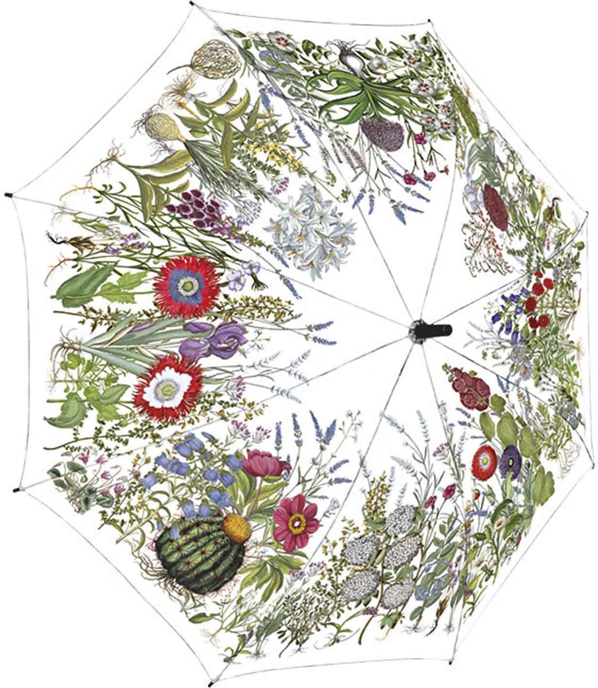 Rannenberg Regenschirm 'Garten von Eichstätt'